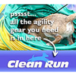 CleanRun Donate Badge